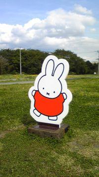 Miffy2